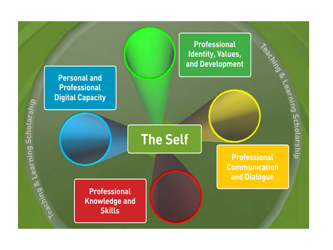 Professional Development Framework